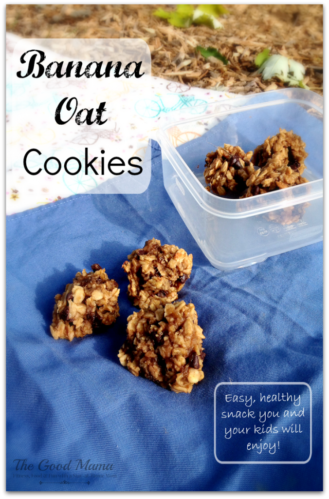 Banana Oat Cookies- Perfect snack for the kids!