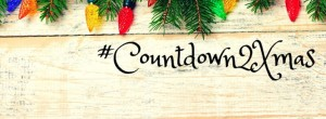 Countdown to Christmas Blog Hop- A collection of recipes, crafts, traditions and more on over 70 blogs!