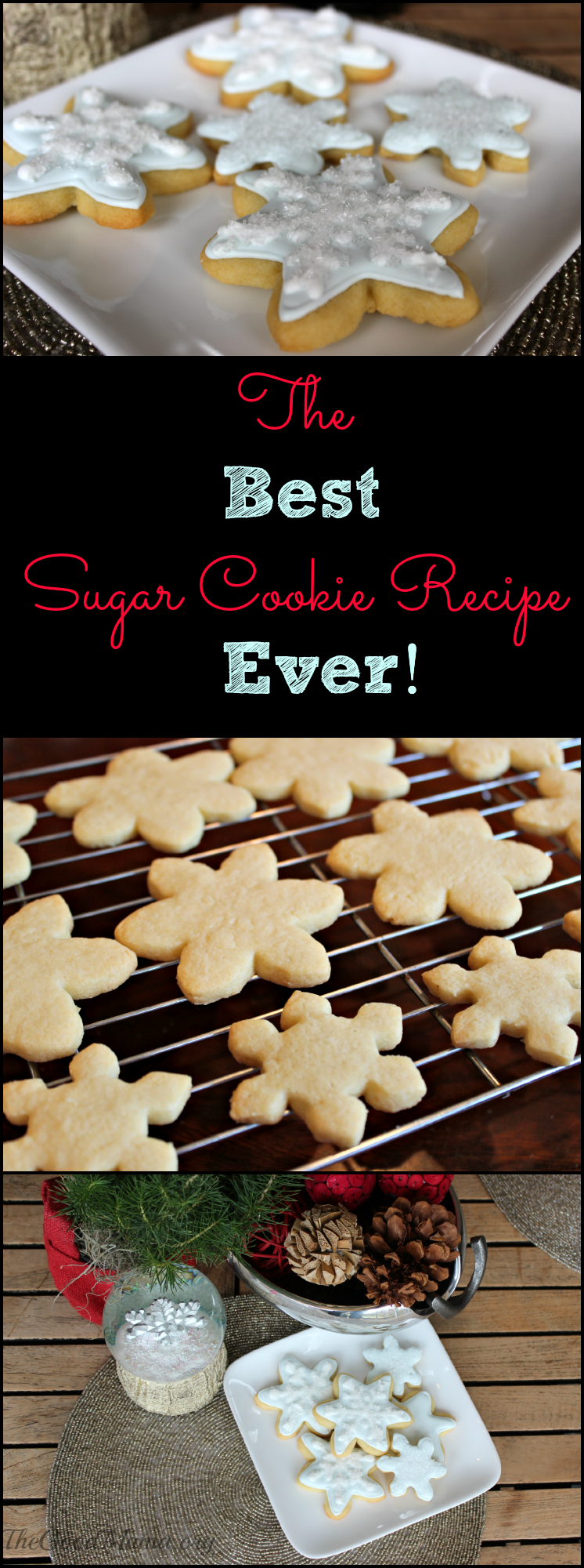 The BEST Sugar Cookie Recipe EVER! Foolproof recipe!