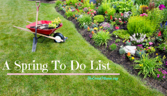 A Spring to Do List- Lots of activities for you and your toddler