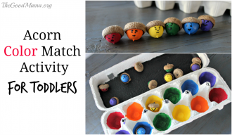 Acorn Color Match Activity for Toddlers