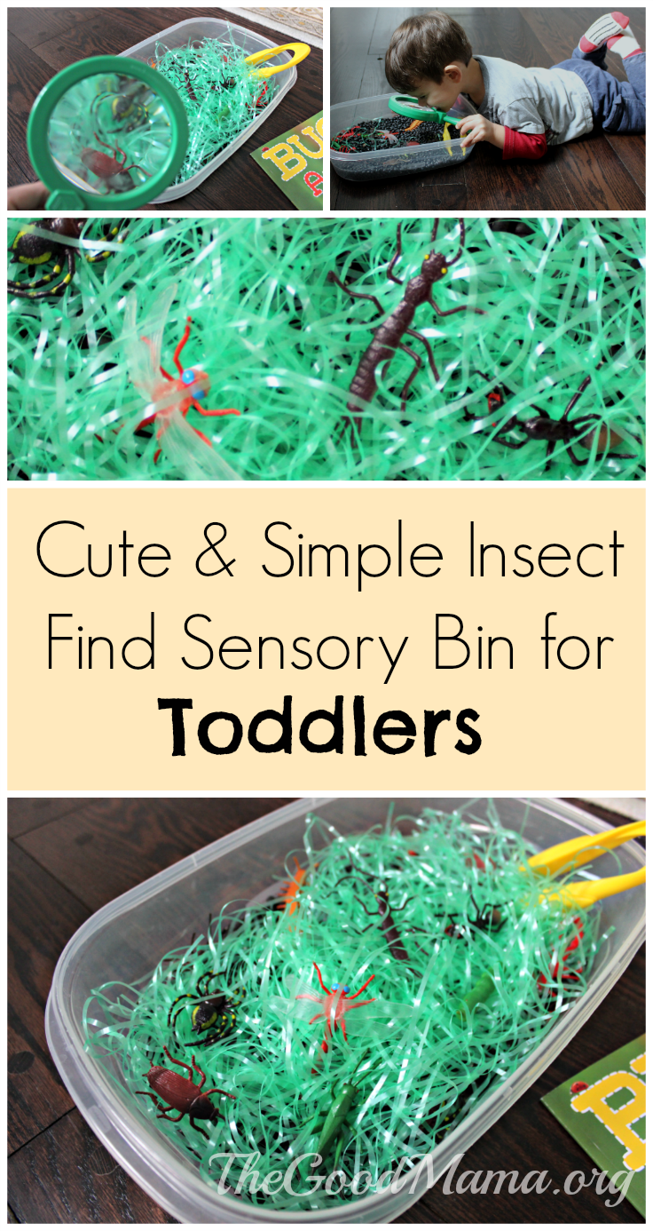 Cute & Simple Insect find Sensory Bin for Toddlers