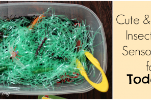 Cute & Simple Insect Find Sensory Bin