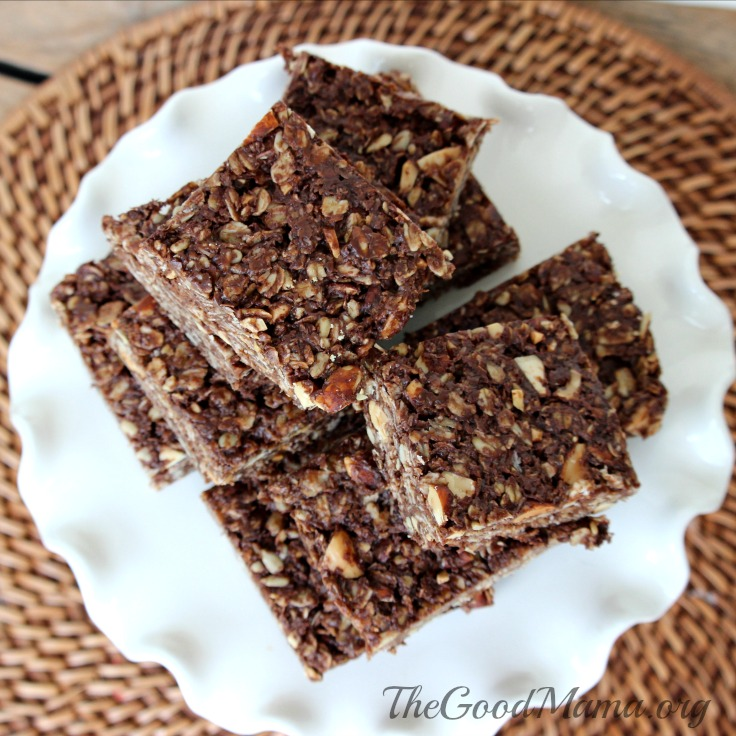 5 Minute No-Bake Chocolate Granola Bars Recipe