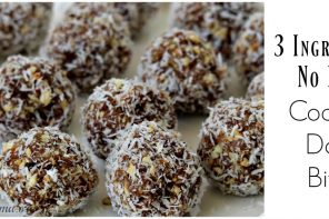 3 Ingredient No Bake Coconut Date Bites Recipe